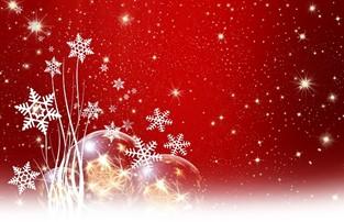 お肌月記|12月 冬本番の季節